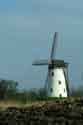 Image Ref: 03-03-84 - Windmill and Canal, Damme, Belgium, Viewed 5180 times