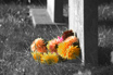 Image Ref: 05-23-5 - Graveyard, Viewed 5308 times
