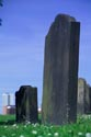 Image Ref: 05-23-65 - Graveyard, Viewed 5633 times