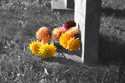 Image Ref: 05-23-7 - Graveyard, Viewed 5385 times