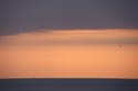Volcanic ash sunrise has been viewed 3532 times