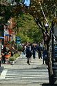 Newbury Street, Boston, Massachusetts has been viewed 12703 times