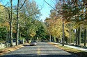 Image Ref: 1212-06-8 - Concord, Massachusetts, Viewed 13833 times