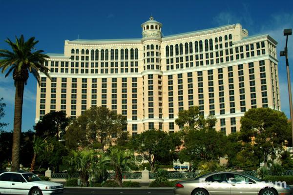 Casino hotels in the usa casino sinaia