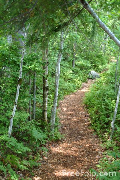 rural footway