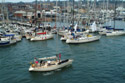 Cowes Week 2002 has been viewed 5888 times