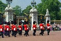 Image Ref: 31-36-11 - Changing of the Guard, Buckingham Palace, London, United Kingdom, Viewed 10331 times