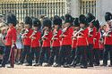 Image Ref: 31-36-23 - Changing of the Guard, Buckingham Palace, London, United Kingdom, Viewed 9955 times
