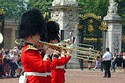 Image Ref: 31-36-32 - Changing of the Guard, Buckingham Palace, London, United Kingdom, Viewed 9560 times
