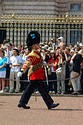 Image Ref: 31-36-51 - Changing of the Guard, Buckingham Palace, London, United Kingdom, Viewed 9513 times