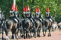 Image Ref: 31-36-8 - Changing of the Guard, Buckingham Palace, London, United Kingdom, Viewed 10905 times