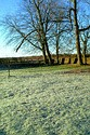 Image Ref: 90-01-52 - Frosty Morning, Viewed 8917 times