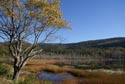 Upper Hadlock Pond, Arcadia National Park, Maine has been viewed 10962 times
