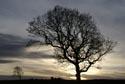 Image Ref: 9908-01-18 - Winter Sunset, Viewed 4472 times