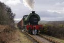 Coal Train on the Tanfield Railway has been viewed 5204 times