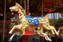Fairground Carousel has been viewed 8357 times