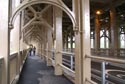 Image Ref: 9908-05-43 - The High Level Bridge, Viewed 3979 times