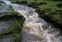Image Ref: 9908-08-2979 - The Strid, Wharfedale, Viewed 4596 times