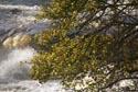 Aysgarth Falls, Wensleydale has been viewed 4972 times