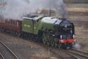 Brand new Peppercorn class A1 60163 Tornado has been viewed 10542 times
