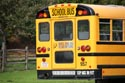 American school bus has been viewed 9935 times