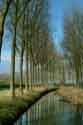Tree-lined Canal, Damme, Belgium has been viewed 14011 times