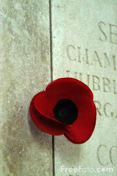 Picture of Poppy, The Menin Gate, Ypres - Free Pictures - FreeFoto.com
