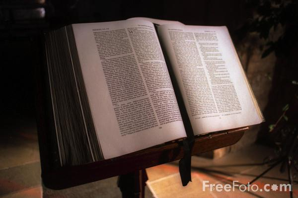 Picture of Bible - Free Pictures - FreeFoto.com