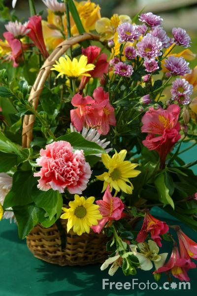 Picture of Church Flowers - Free Pictures - FreeFoto.com