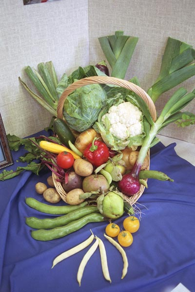 Harvest Festival pictures, free use image, 05-11-51 by FreeFoto.