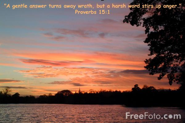 Picture of A gentle answer turns away wrath - Free Pictures - FreeFoto.com