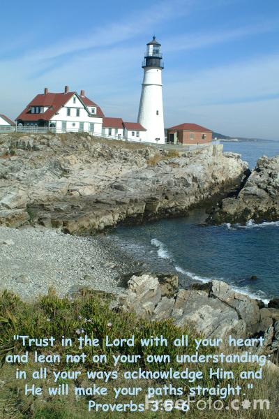 Picture of Trust in the LORD - Free Pictures - FreeFoto.com