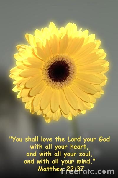 You shall love the Lord your God pictures, free use image