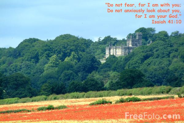 Picture of Do not fear for I am with you - Free Pictures - FreeFoto.com