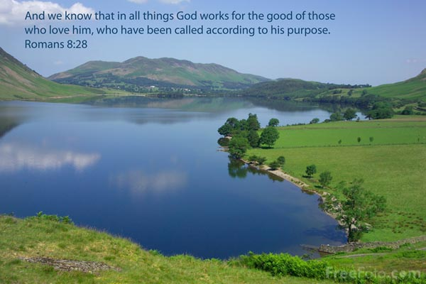 Picture of God works for the good of those who love him - Free Pictures - FreeFoto.com