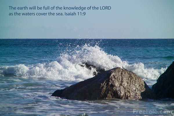 Picture of The earth will be full of the knowledge of the LORD - Free Pictures - FreeFoto.com