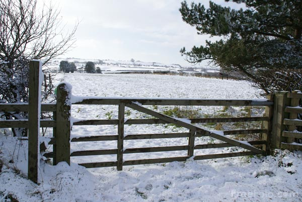 Picture of Farmyard Gate in the snow - Free Pictures - FreeFoto.com