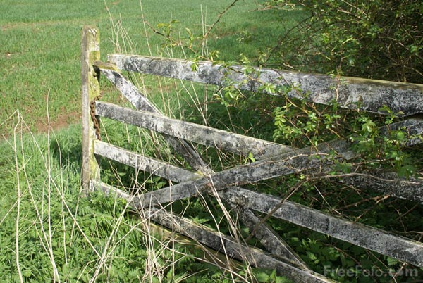Picture of Old Farm Gate - Free Pictures - FreeFoto.com