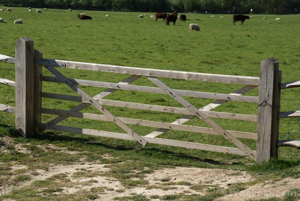 Picture of Gate into a field - Free Pictures - FreeFoto.com