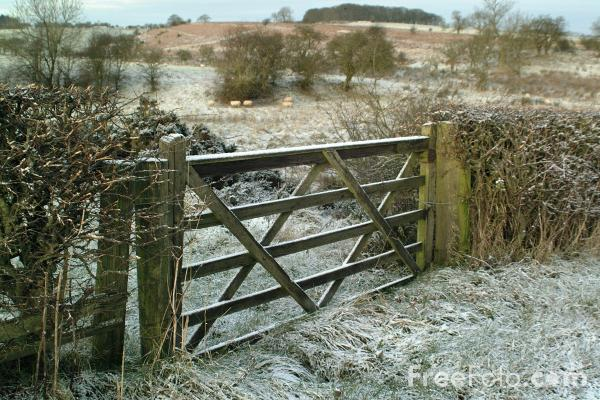 Picture of Farmyard Gate - Free Pictures - FreeFoto.com