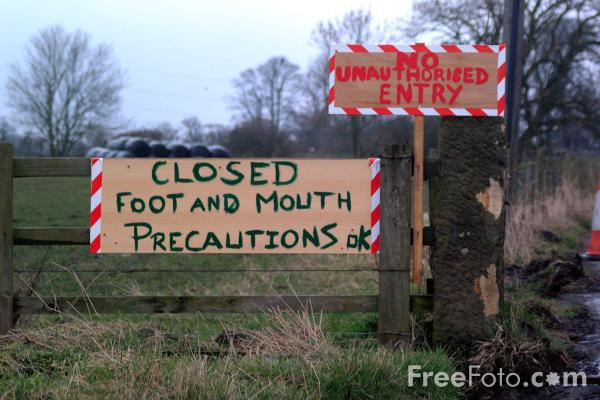 Picture of Closed Road, Heddon on the Wall - Free Pictures - FreeFoto.com