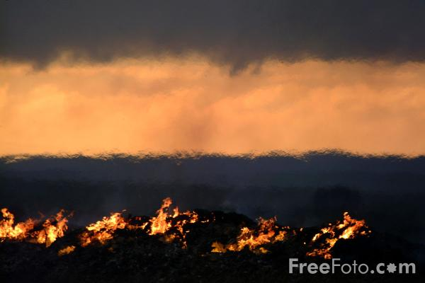 Picture of Foot-and-Mouth Funeral Pyre, Hadrians Wall, Northumberland - Free Pictures - FreeFoto.com