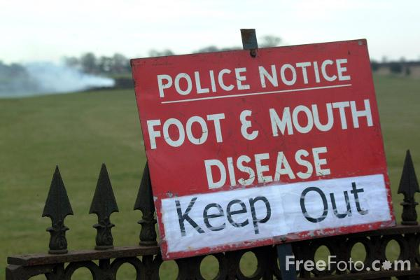 Picture of Police Notice Foot and Mouth Disease Keep Out, Ponteland, Northumberland - Free Pictures - FreeFoto.com