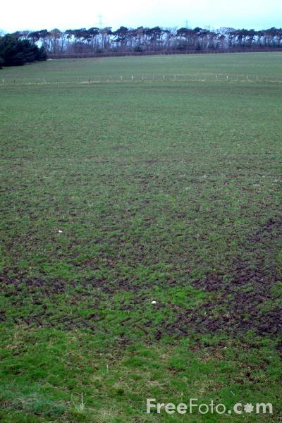 Picture of Empty field, Heddon on the Wall - Free Pictures - FreeFoto.com