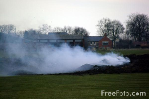Picture of Funeral Pyres, Ponteland, Northumberland - Free Pictures - FreeFoto.com
