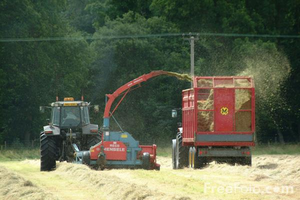 Picture of Tractor and forage harvester working - Free Pictures - FreeFoto.com