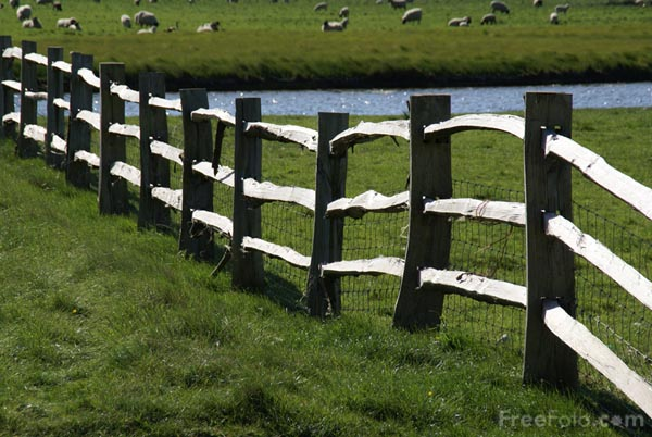 Picture of Fence - Free Pictures - FreeFoto.com