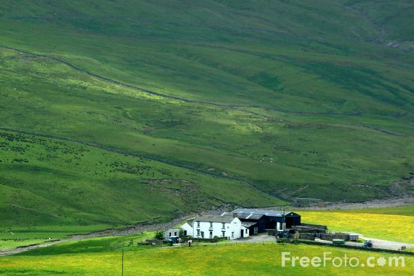 Picture of Farm Buildings, Upper Teesdale - Free Pictures - FreeFoto.com