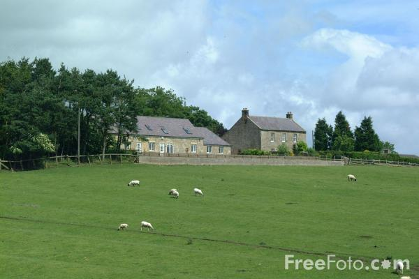 Picture of Farm Buildings - Free Pictures - FreeFoto.com