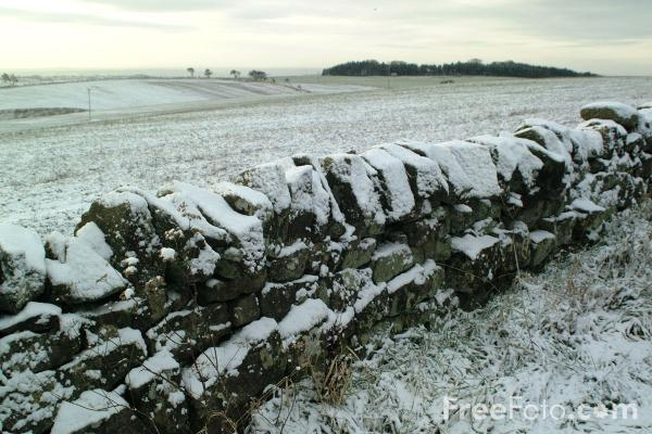 Picture of Dry Stone Wall - Free Pictures - FreeFoto.com